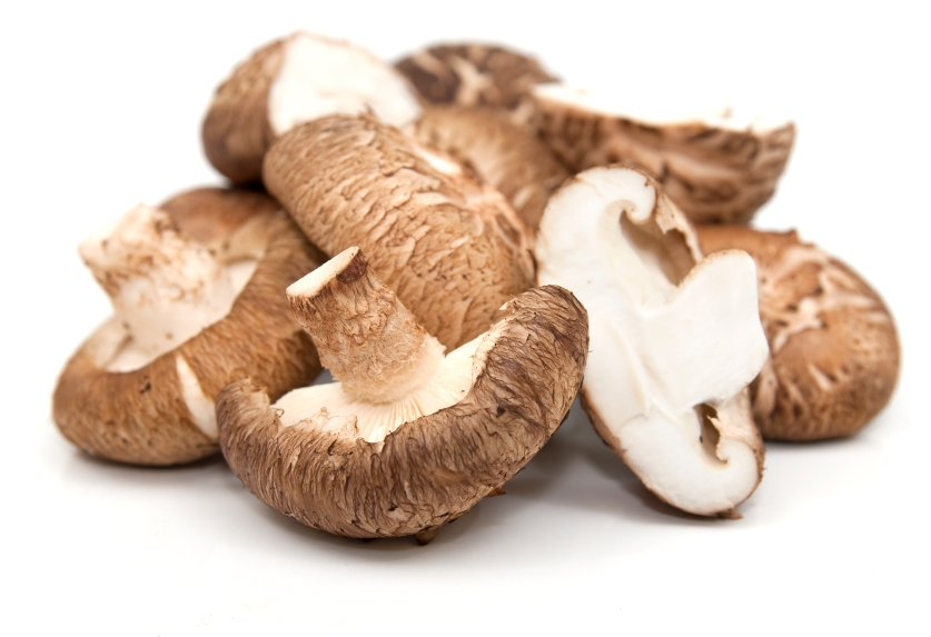 shiitake medicinal mushrooms